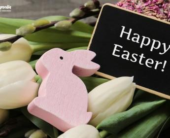 Wesołych Świąt Wielkanocnych! ♥