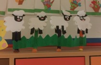 Owieczki / Sheep – Jeżyki