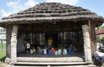 Żabki iGwiazdeczki – Warsztaty wafrykańskiej wiosce