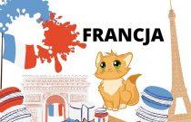 KOTKI-Flaga Francji