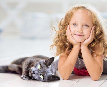 Dzień Kota/Cat's Day :)
