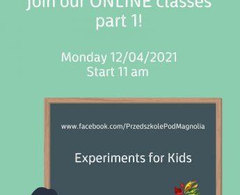 Zajęcia Online/Online classes – FB