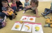 Owocowe zabawy – Liski
