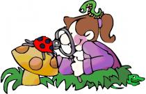 Zajęcia przyrodnicze – grupa Pszczółek