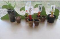 Mali żuczkowi ogrodnicy – zajecia w Żuczkach (marzec)