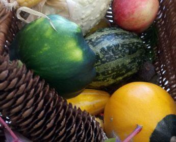 Jesień – wokół nas!