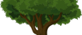 Drzewo zpapieru…czy papier zdrzewa? :)