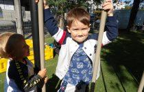 Zabawy na przedszkolnym placu zabaw – Liski/ on the playground