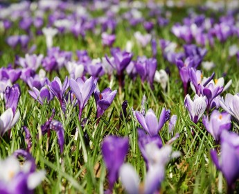 Wiosenne Warsztaty Weekendowe!/ Spring Weekend Workshops!