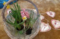 Dzień Kobiet u Motylków / Women's Day in Butterflies group