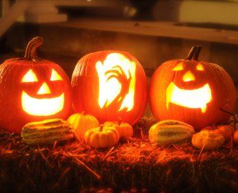 "Results of  ""Pumpkin carving"" contest / Wyniki konkursu ""Cuda zdyni"""