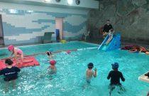 Basen / Swimming pool 🏊