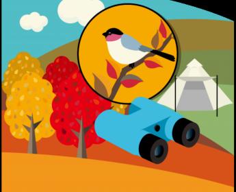 What's throught the binoculars? / Akademia Tropicieli Przyrody